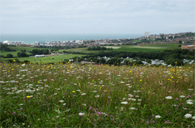 The South Downs National Park, looking towards Brighton and the sea