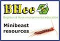 minibeast resources