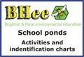 pond activities and identification charts