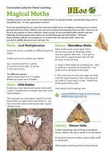 Outdoor home learning – Week 9 – Magical moths